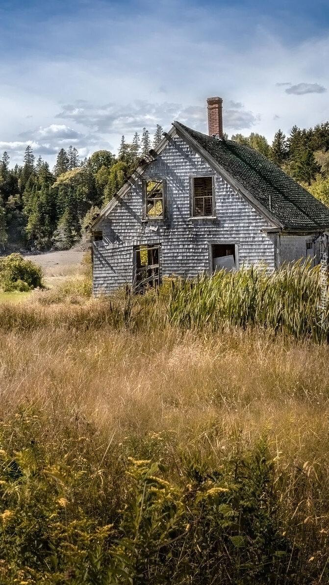 Zniszczony dom na łące