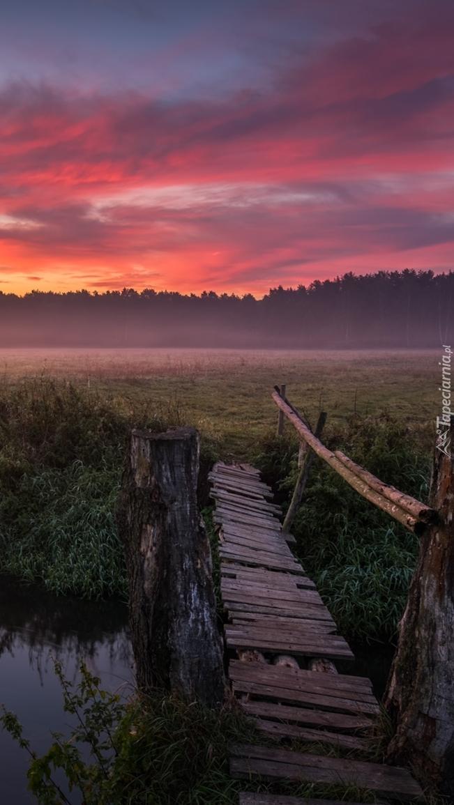 Zniszczony drewniany mostek