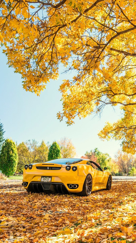 Żółte Ferrari pod drzewem