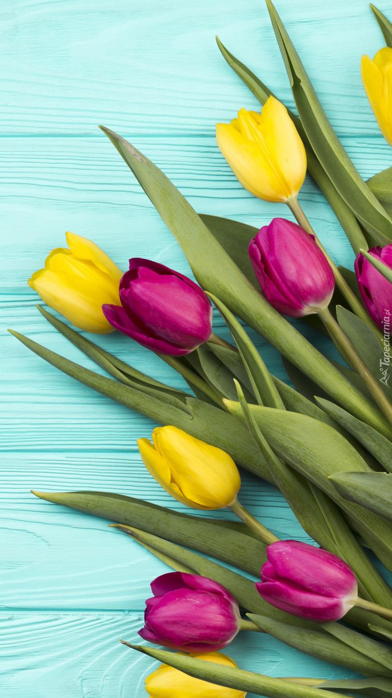 Żółte i czerwone tulipany