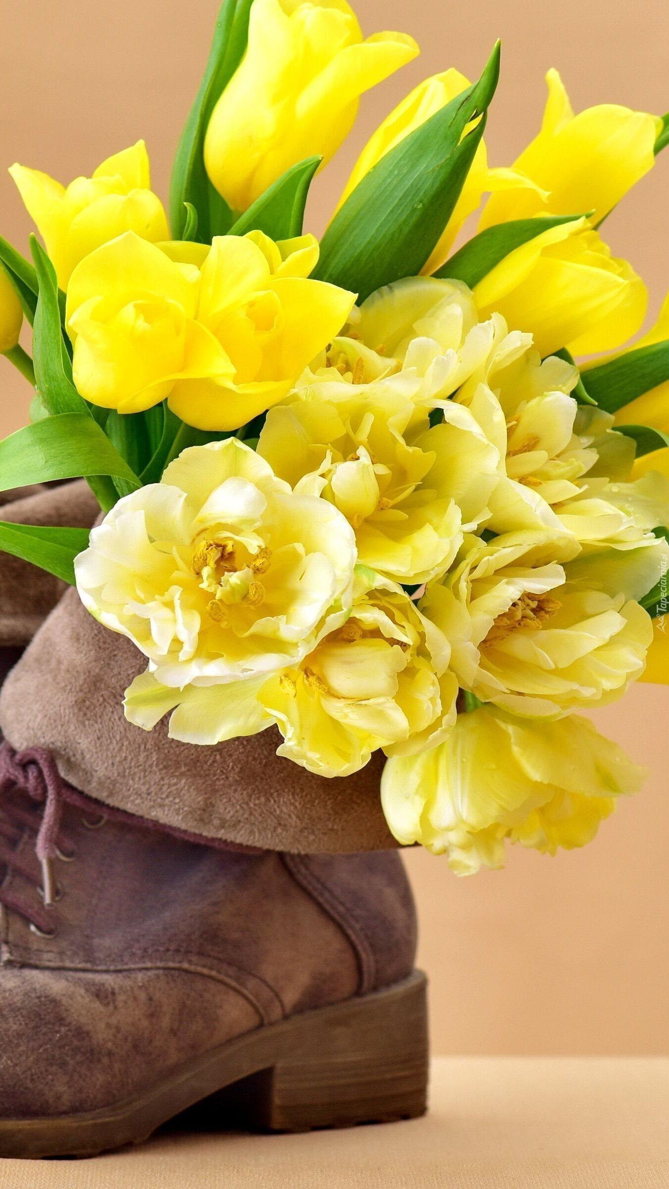 Żółte tulipany w bucie