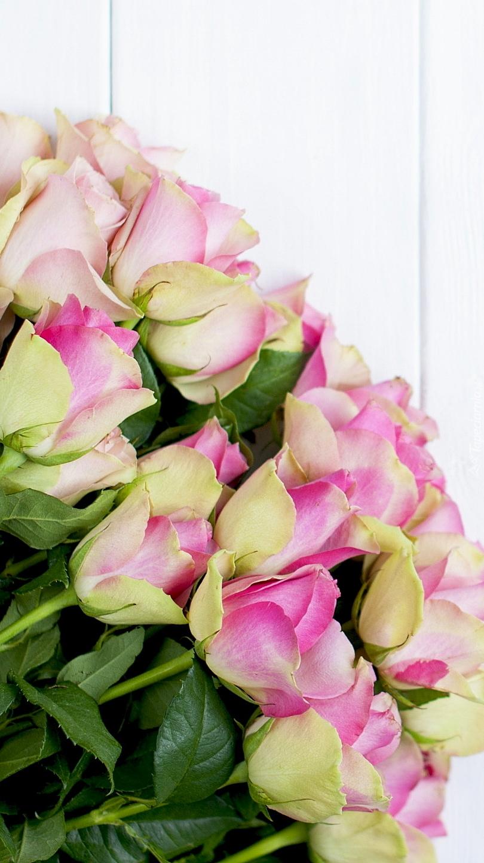 Żółto-różowe róże