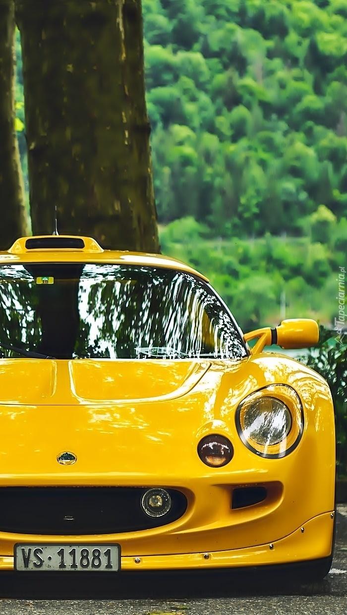 Żółty  Lotus Exige S1