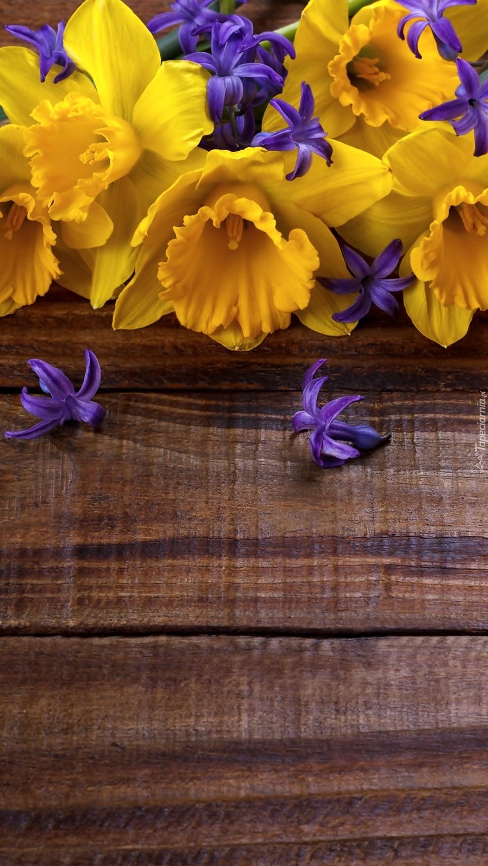 Żonkile i foletowe kwiatki