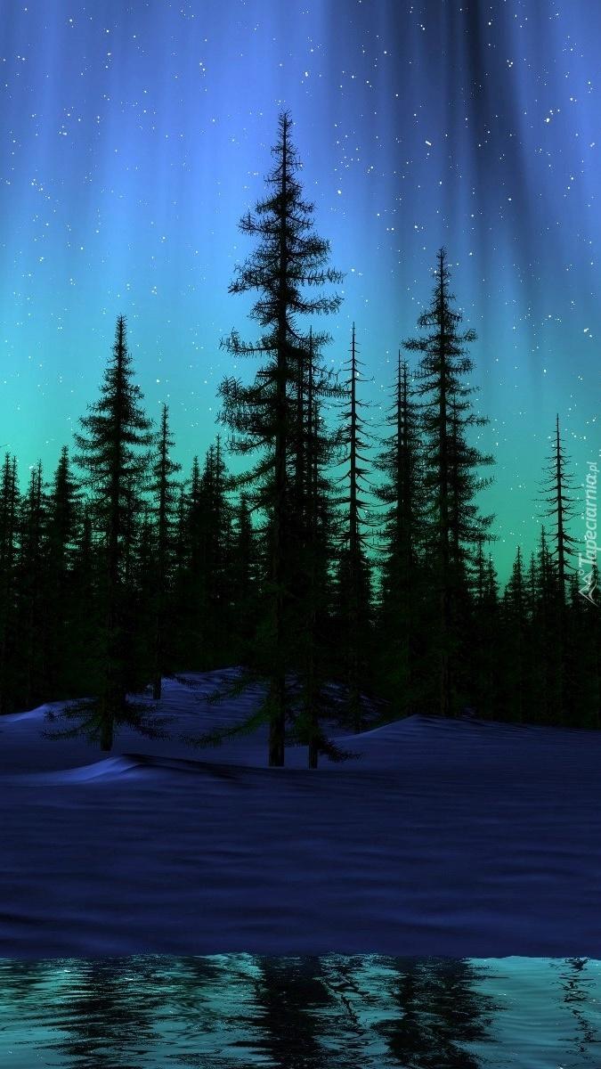 Zorza polarna nad lasem