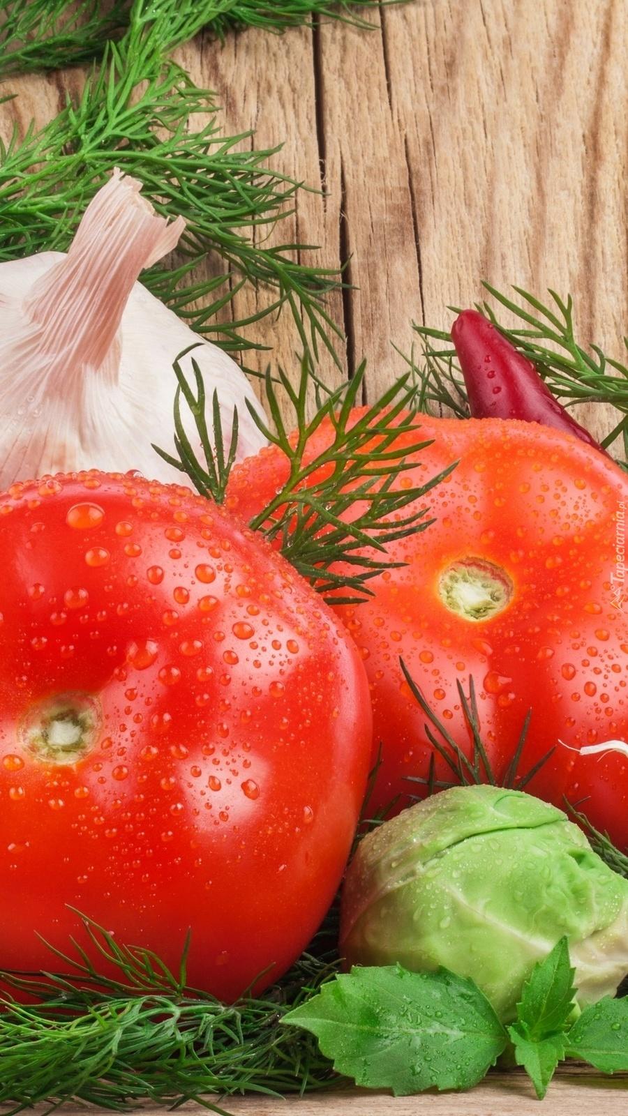 Zroszone pomidory i koperek