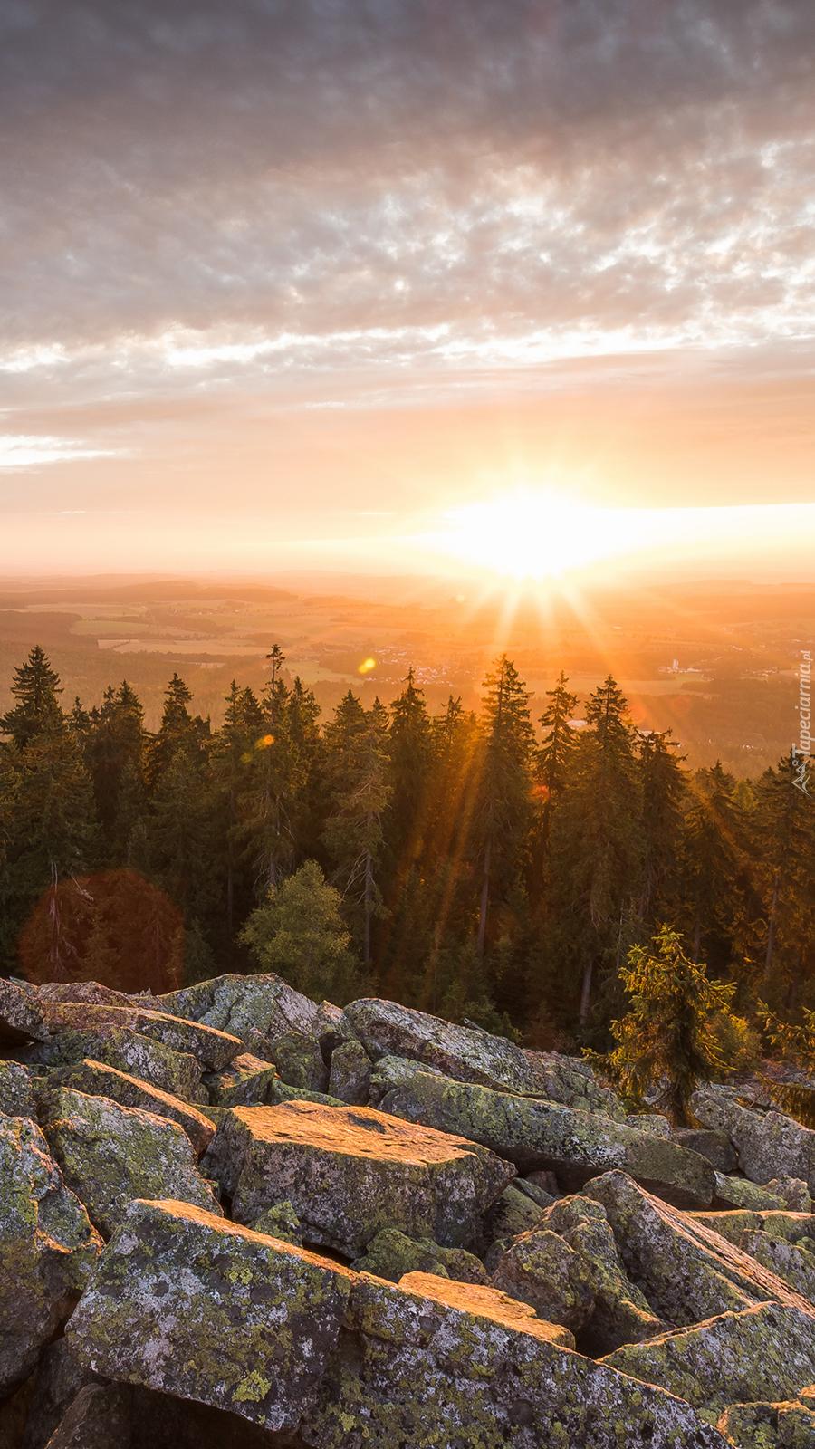 Zwały kamieni i las we wschodzącym słońcu