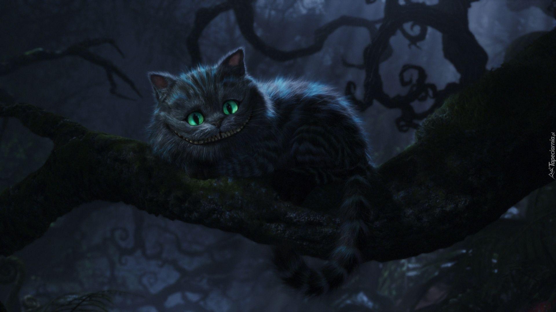 Alicja W Krainie Czarów Cheshire Kot