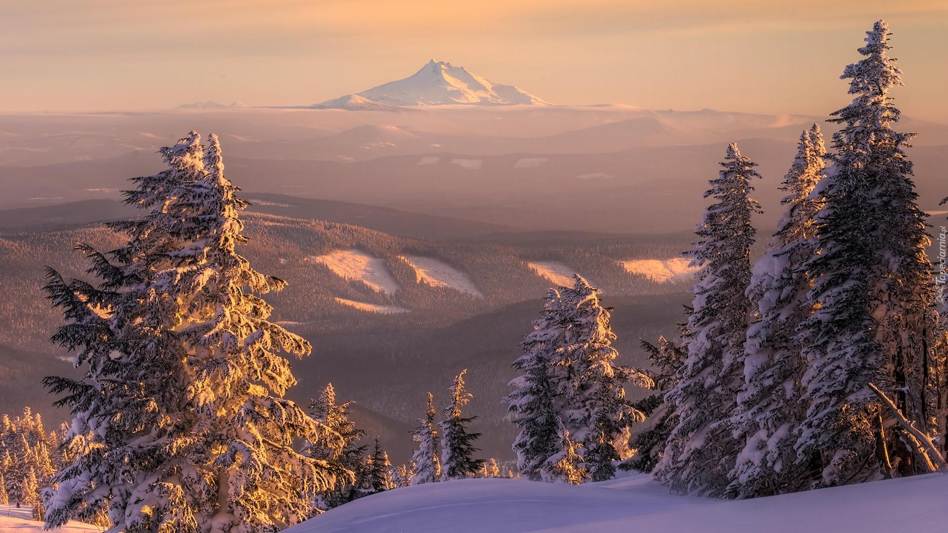 снег зима гора ели snow winter mountain ate без регистрации