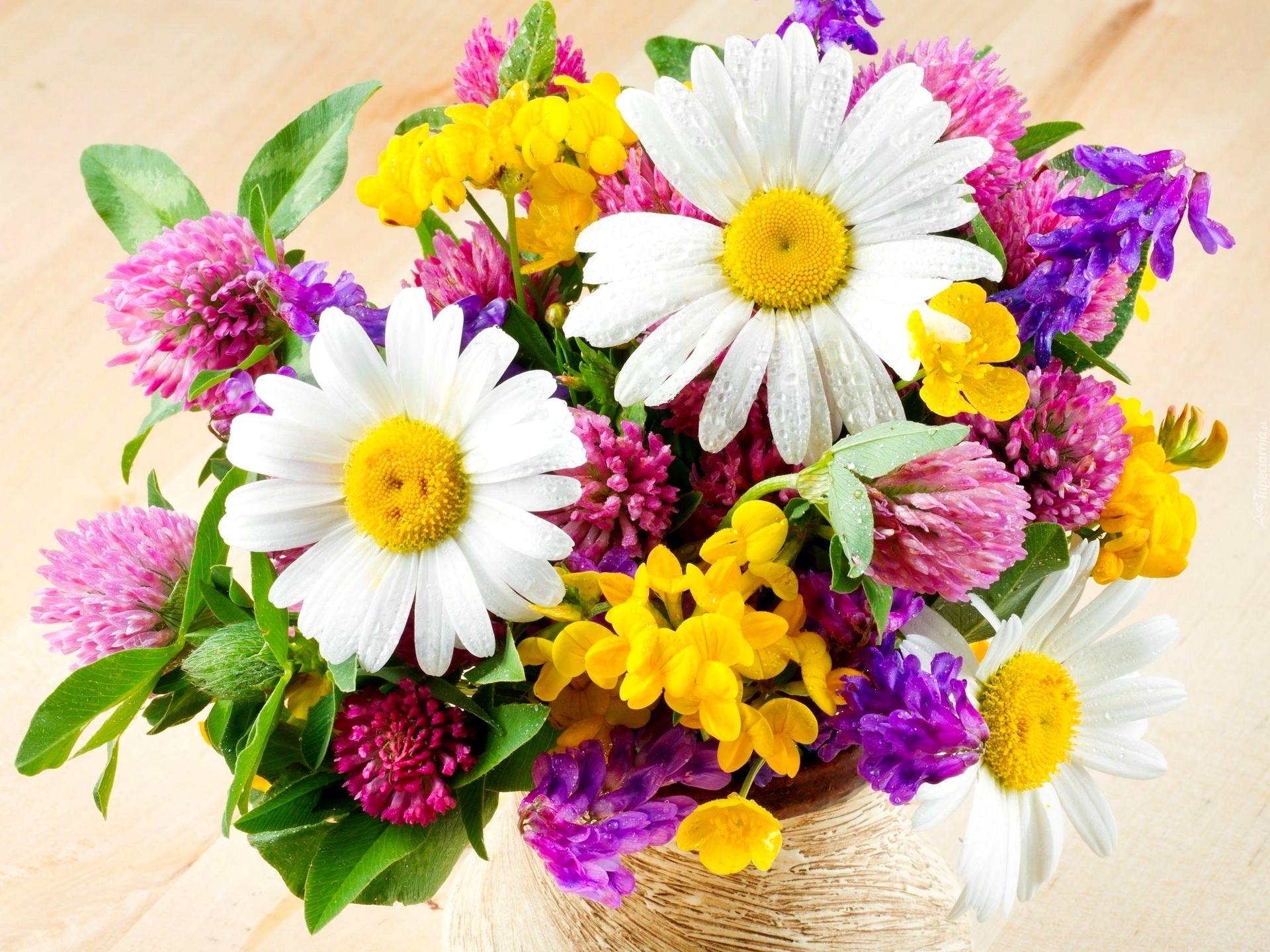 Bukiet, Kwiaty, Polne