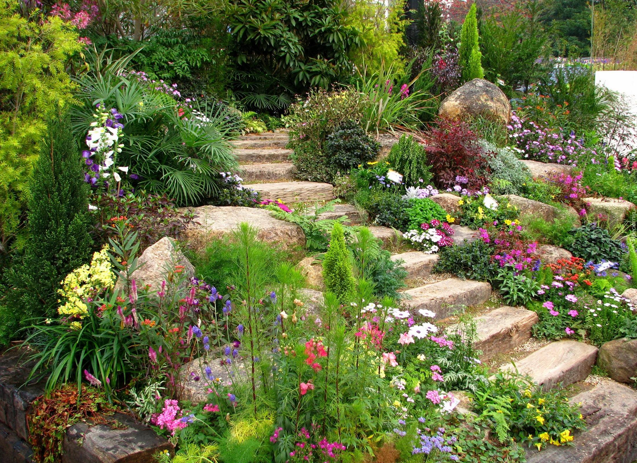 Ogrod Kwiaty Schody Kamienie