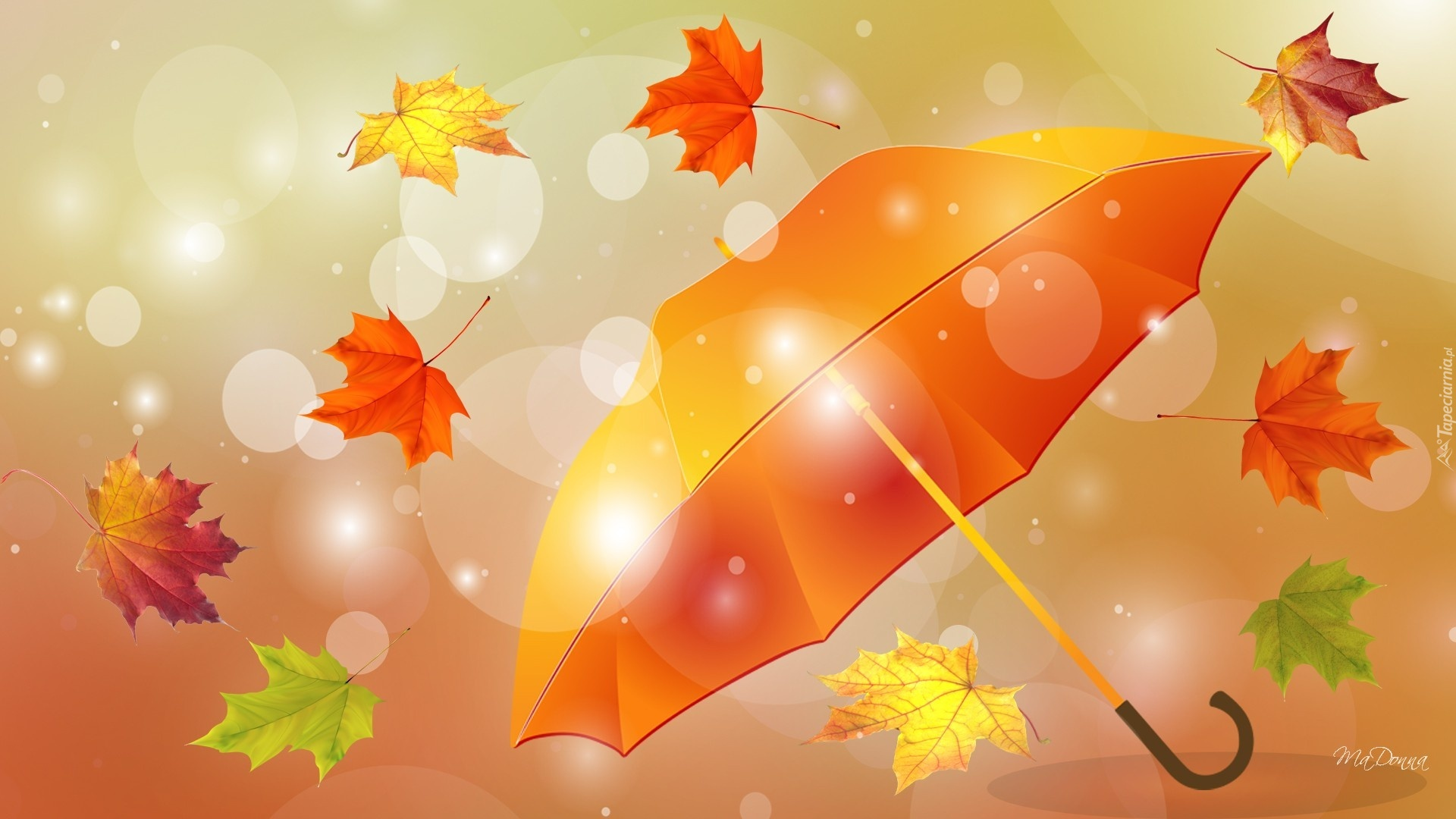 Jesienne, Liście, Parasol