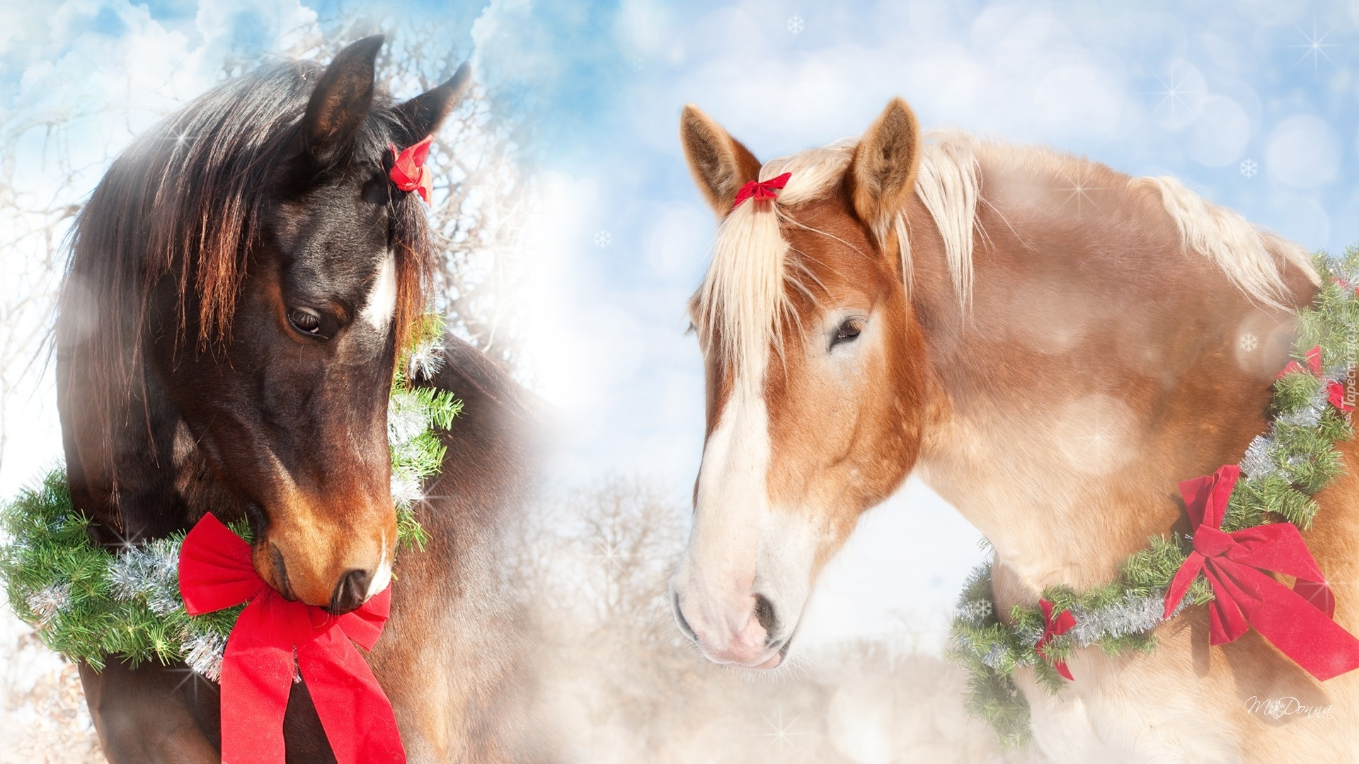 Новогодняя картинки лошади