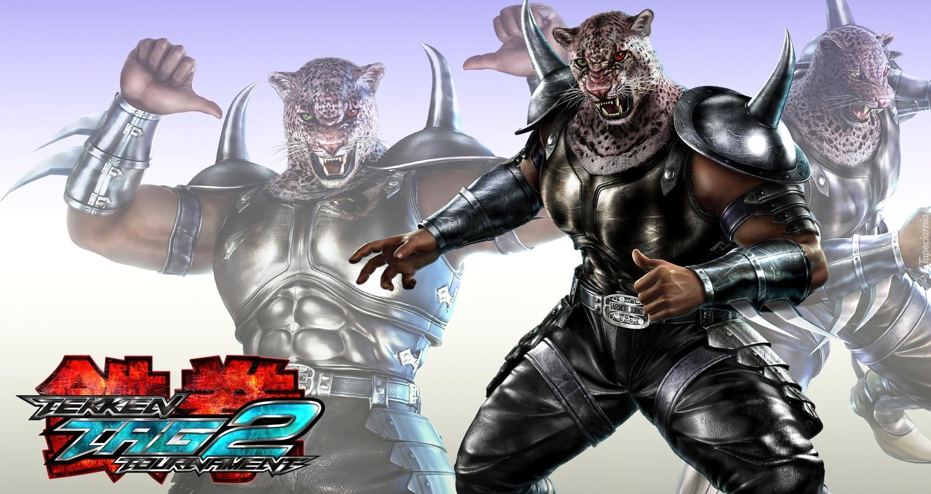 Tekken Tag Tournament 2 Armor King