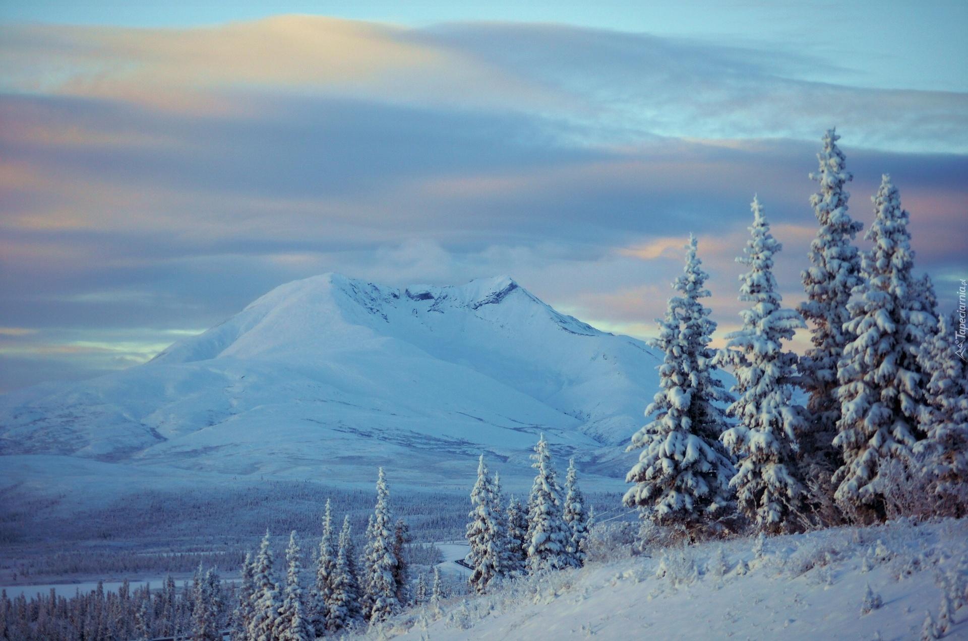 гора снег ели зима mountain snow ate winter без смс