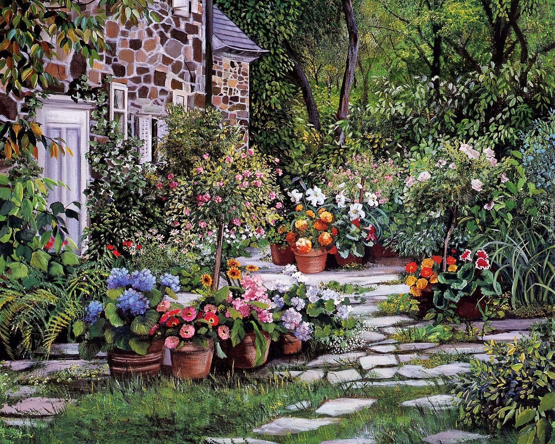Dom Ogród Kwiaty Doniczki