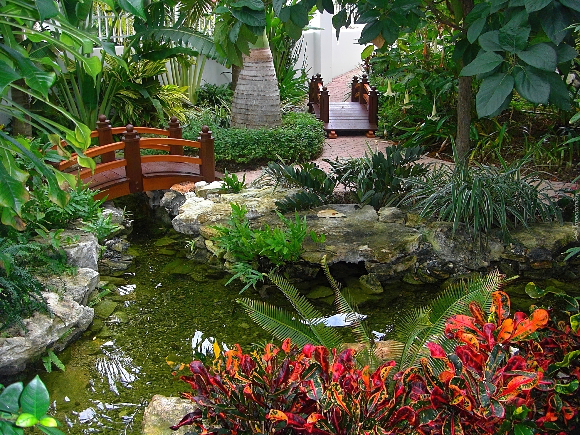 Egzotyczny Ogród Oczko Wodne Mostki