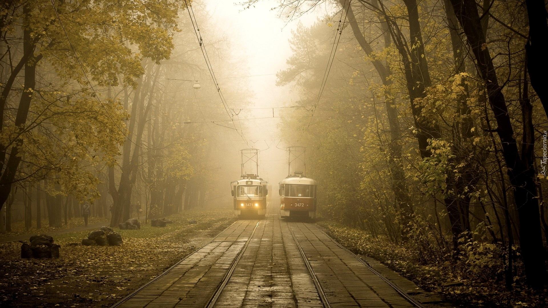 ночные трамваи загрузить