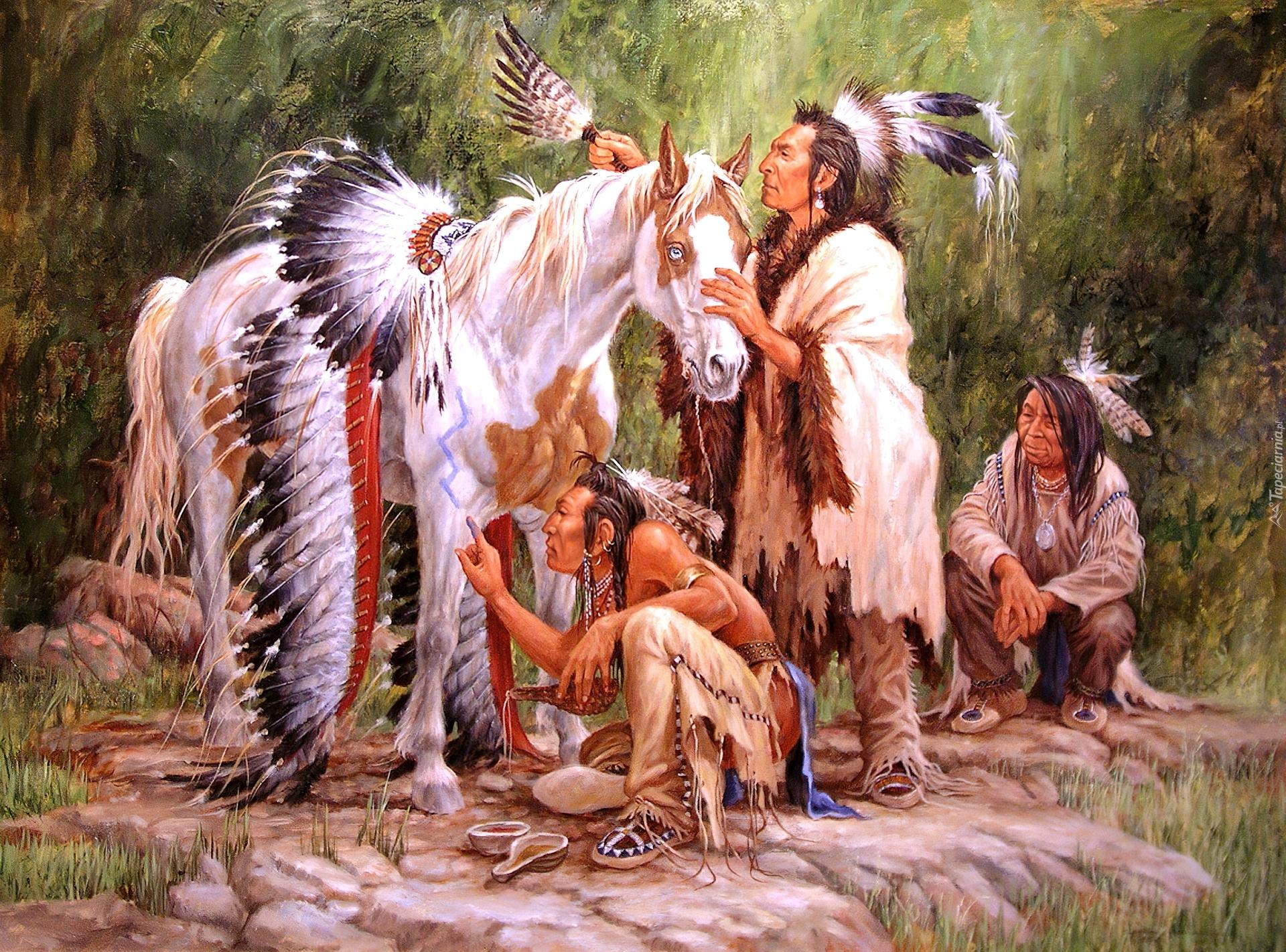 obraz larry fanning indianie ko� pi243ropusz