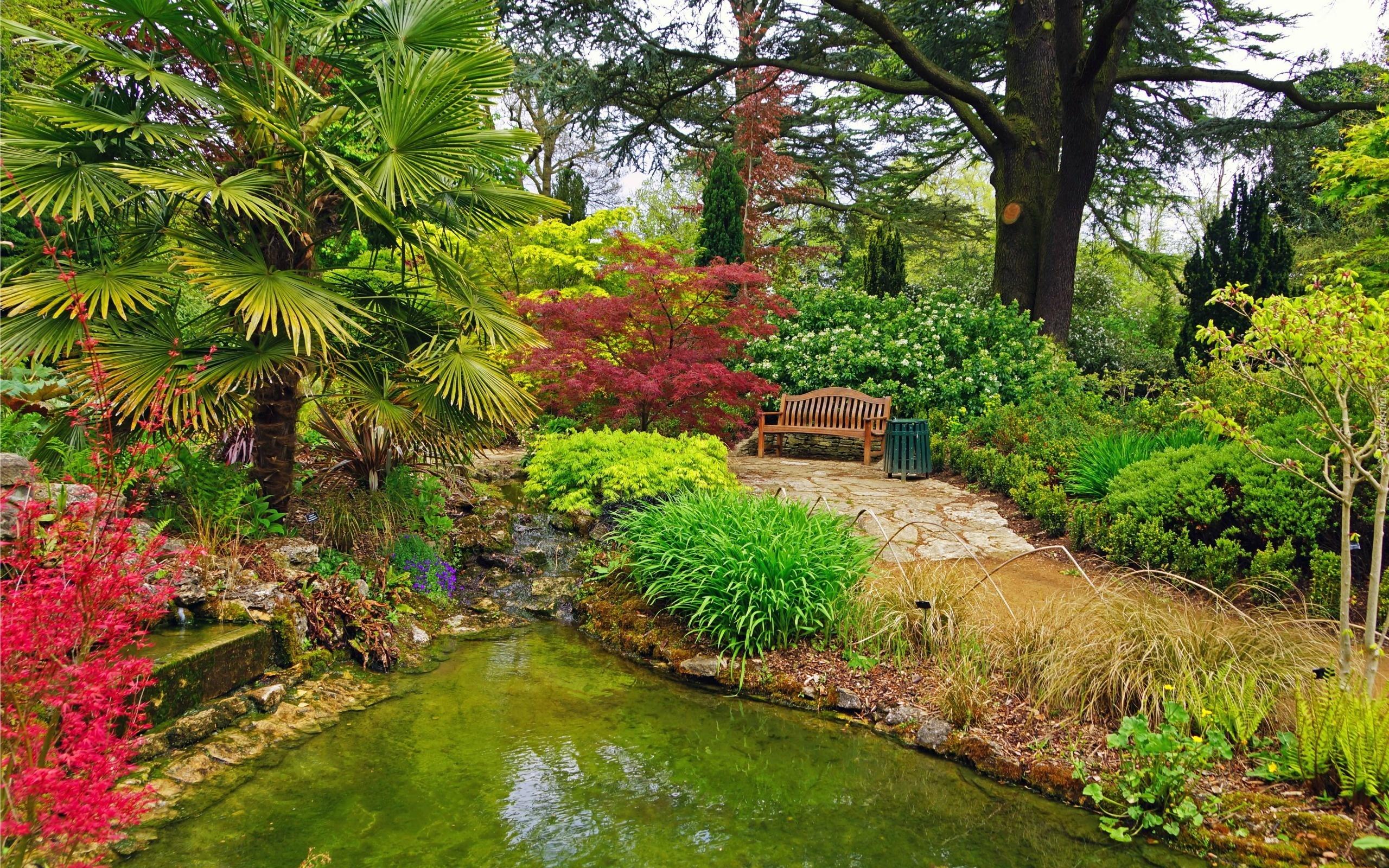 Ogród, Ławka, Drzewa, Krzewy, Kwiaty, Zbiornik, Wodny