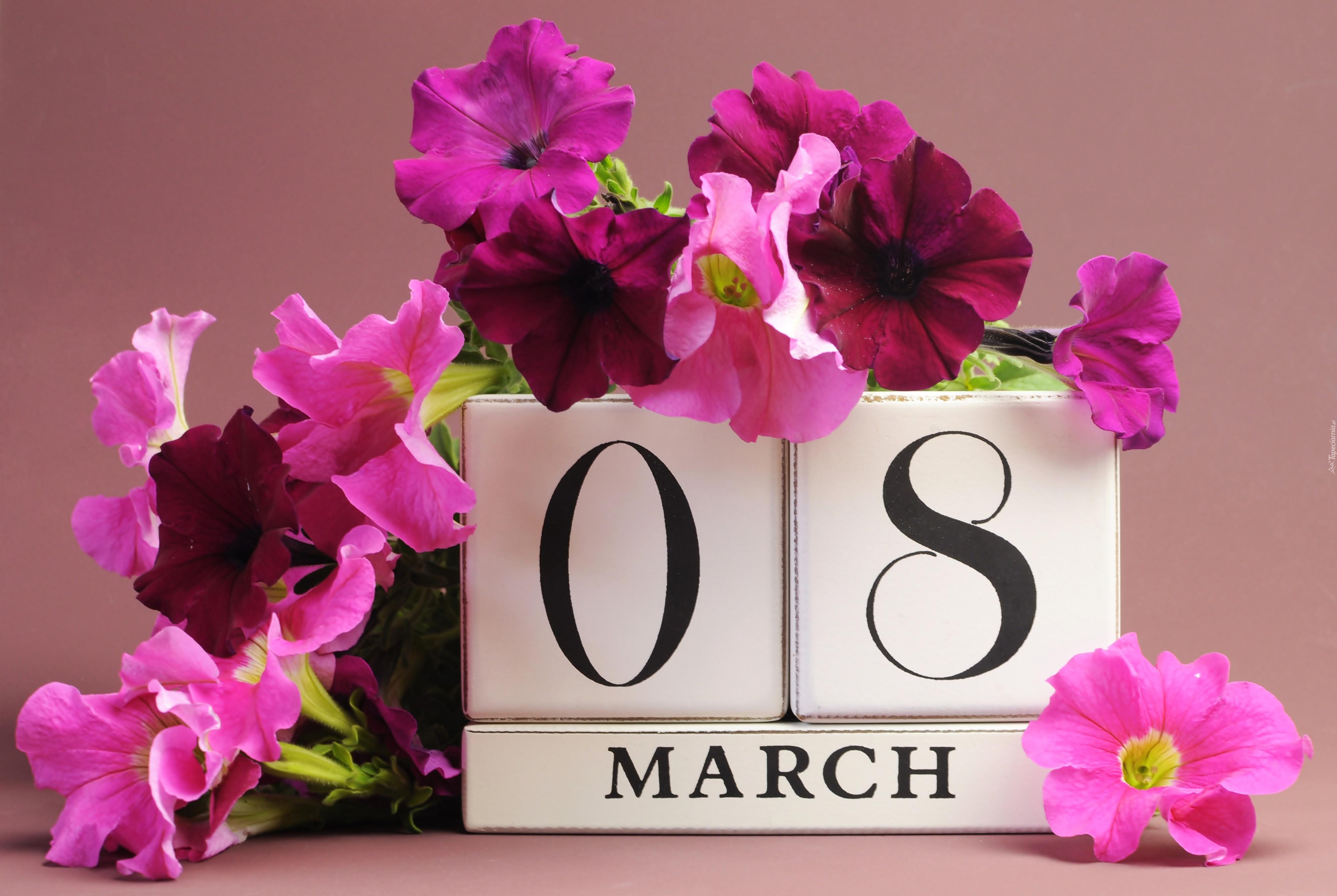 8 Marca Dzien Kobiet Kwiaty Petunia Ogrodowa