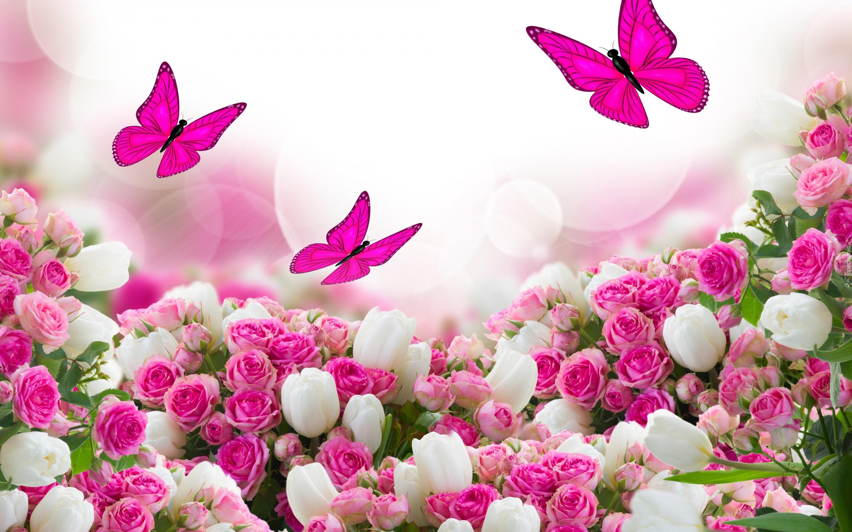 Znalezione obrazy dla zapytania kwiaty na dzien koiet