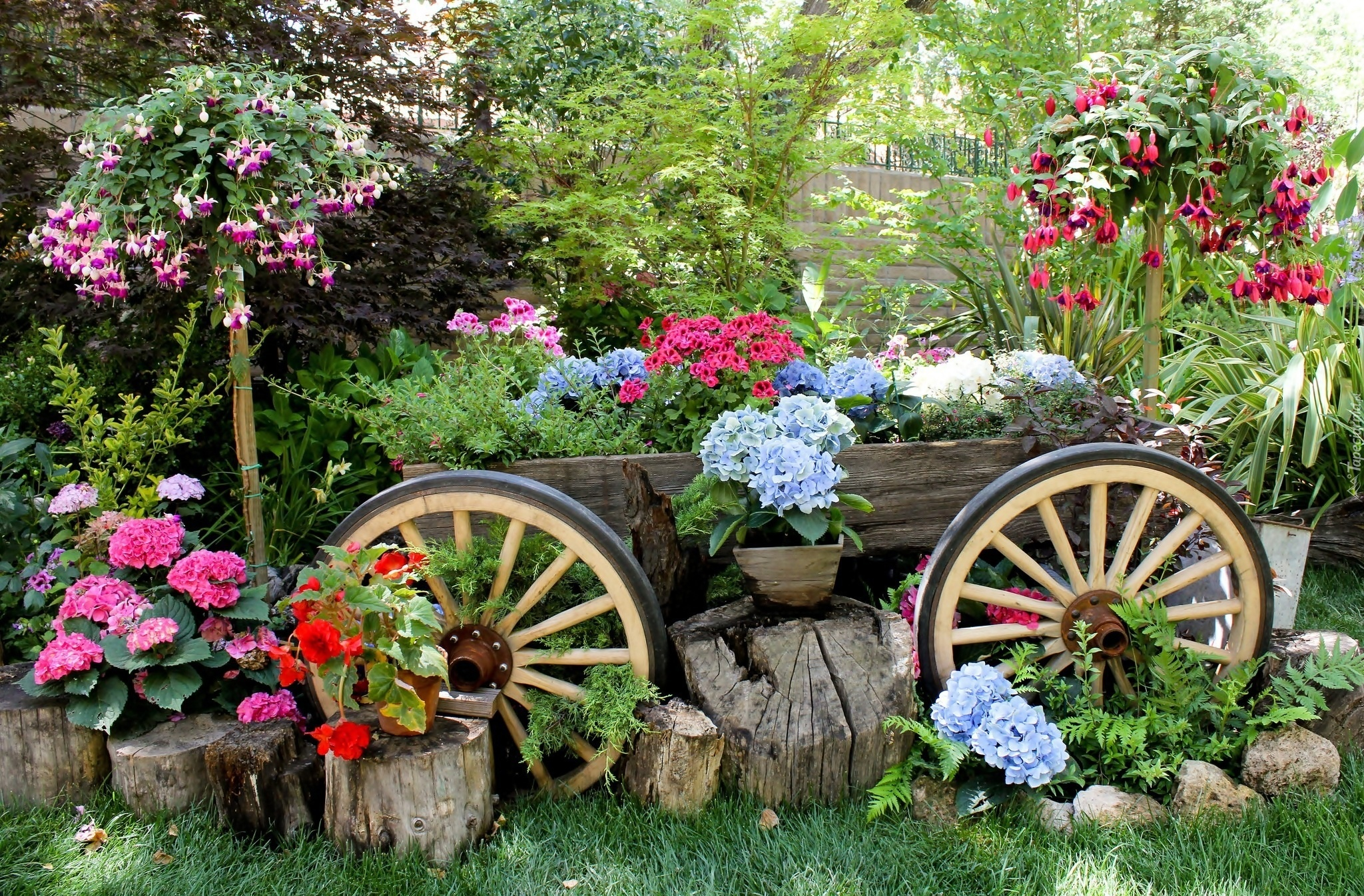 Ogrod Kwiaty Wozek