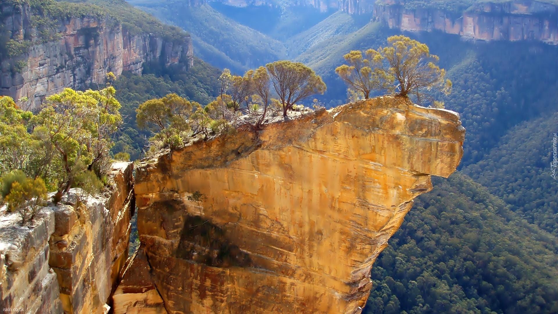 природа деревья скалы горы ночь река онлайн