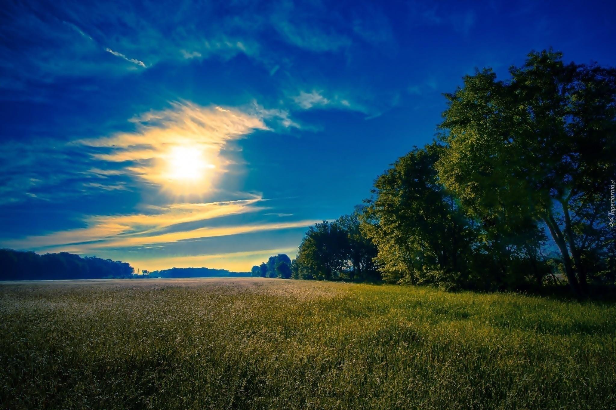 Лучи солнца на поле сквозь тучи загрузить