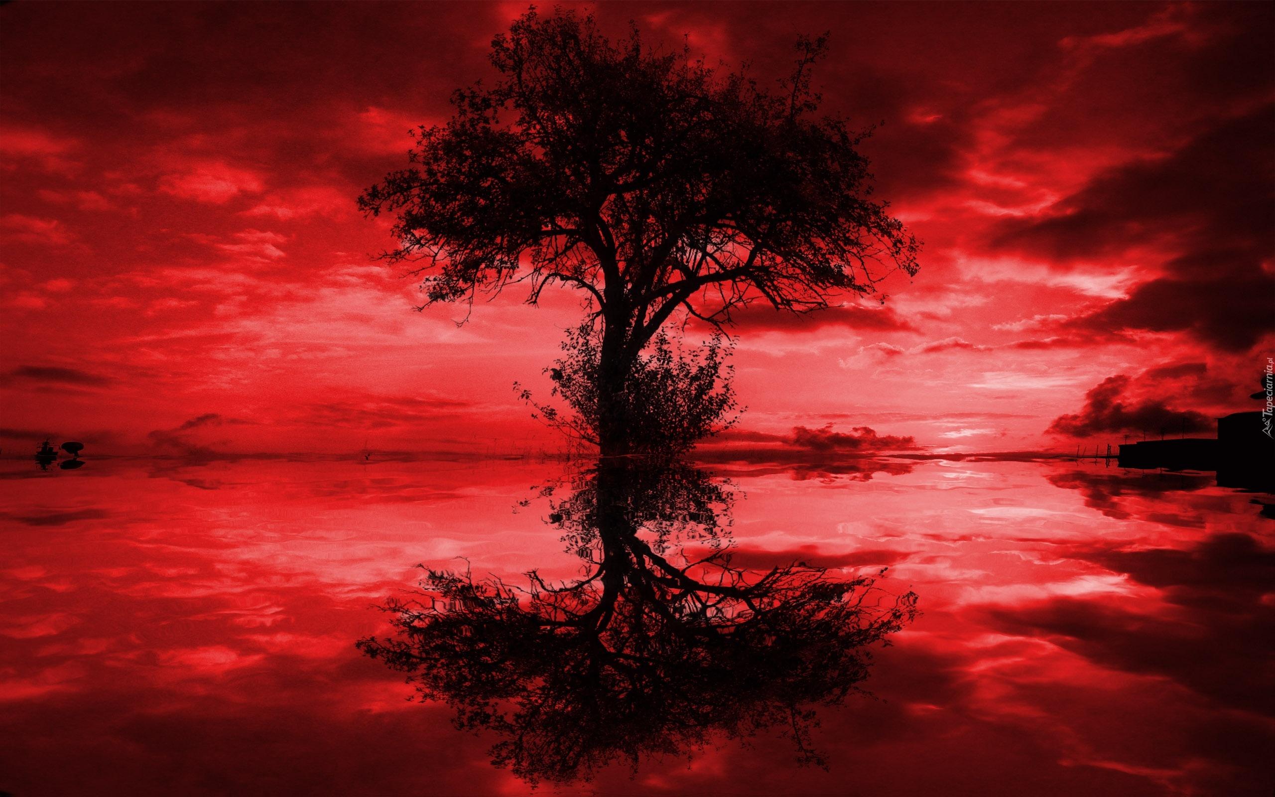 красные красивые картинки на телефон отличии