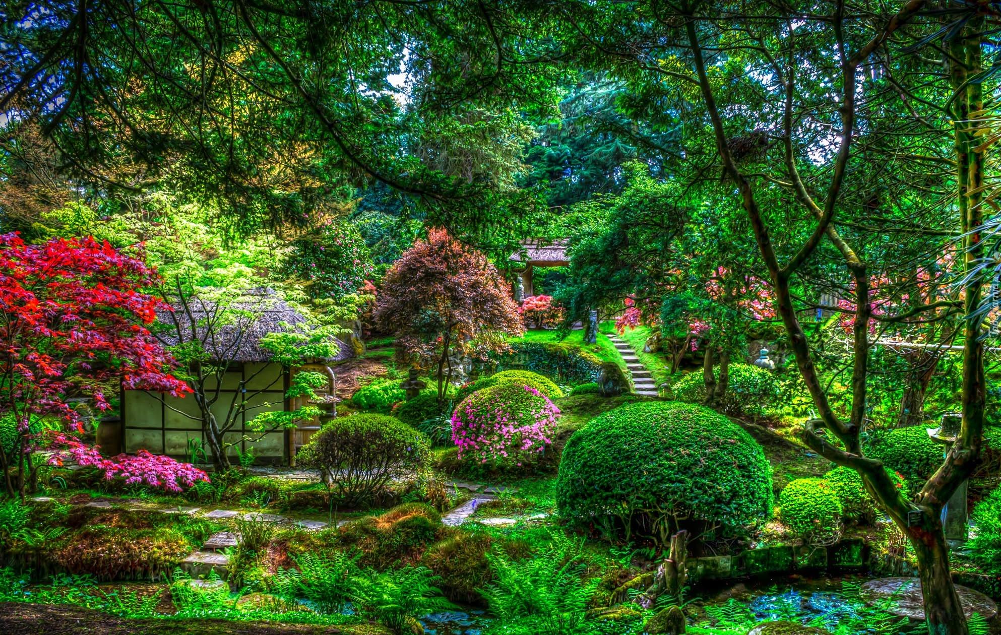 Ogród, Drzewa, Krzewy, Kwiaty