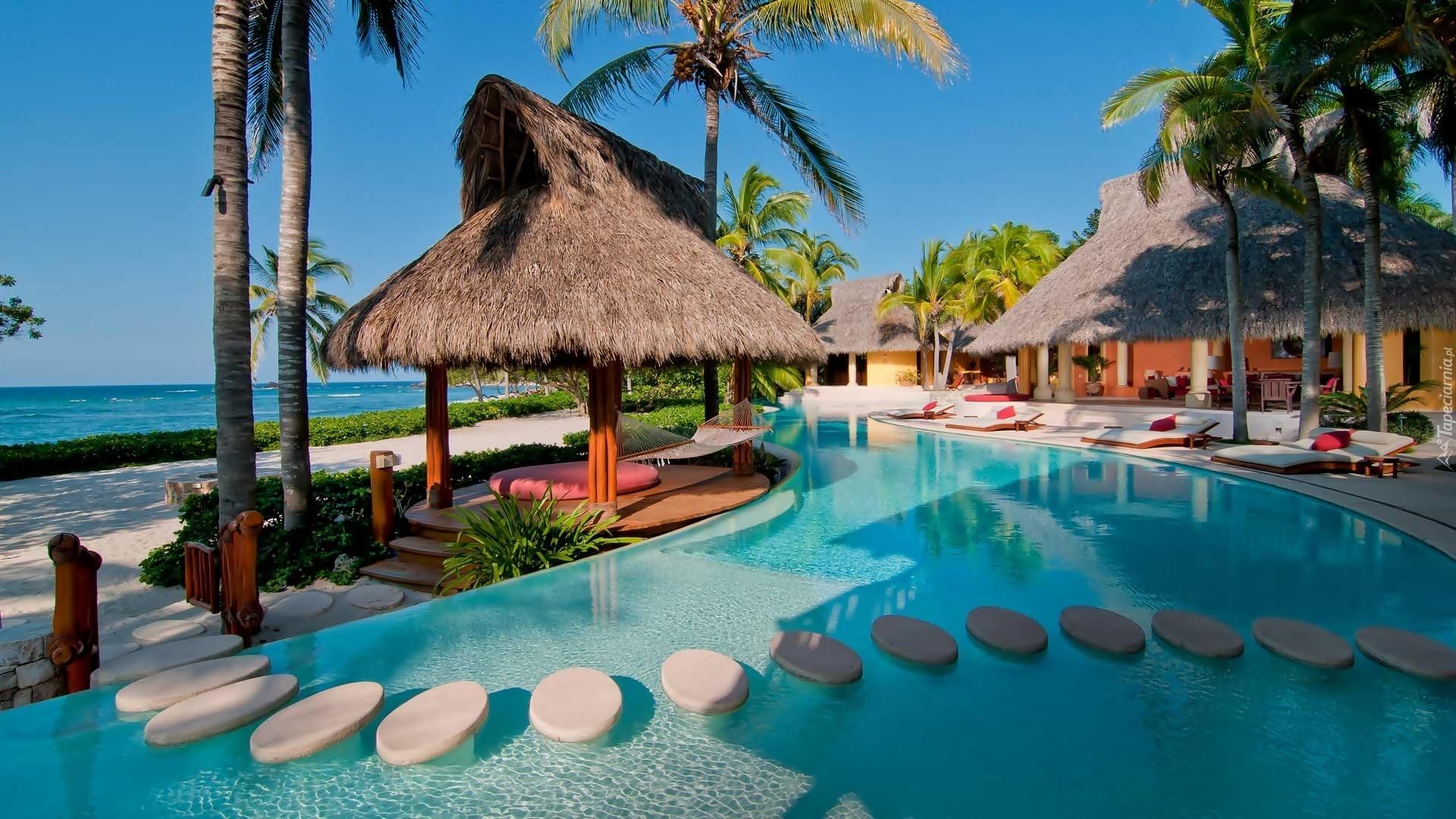 Basen palmy domy hotel ocean tropiki for Imagenes de jardines exoticos