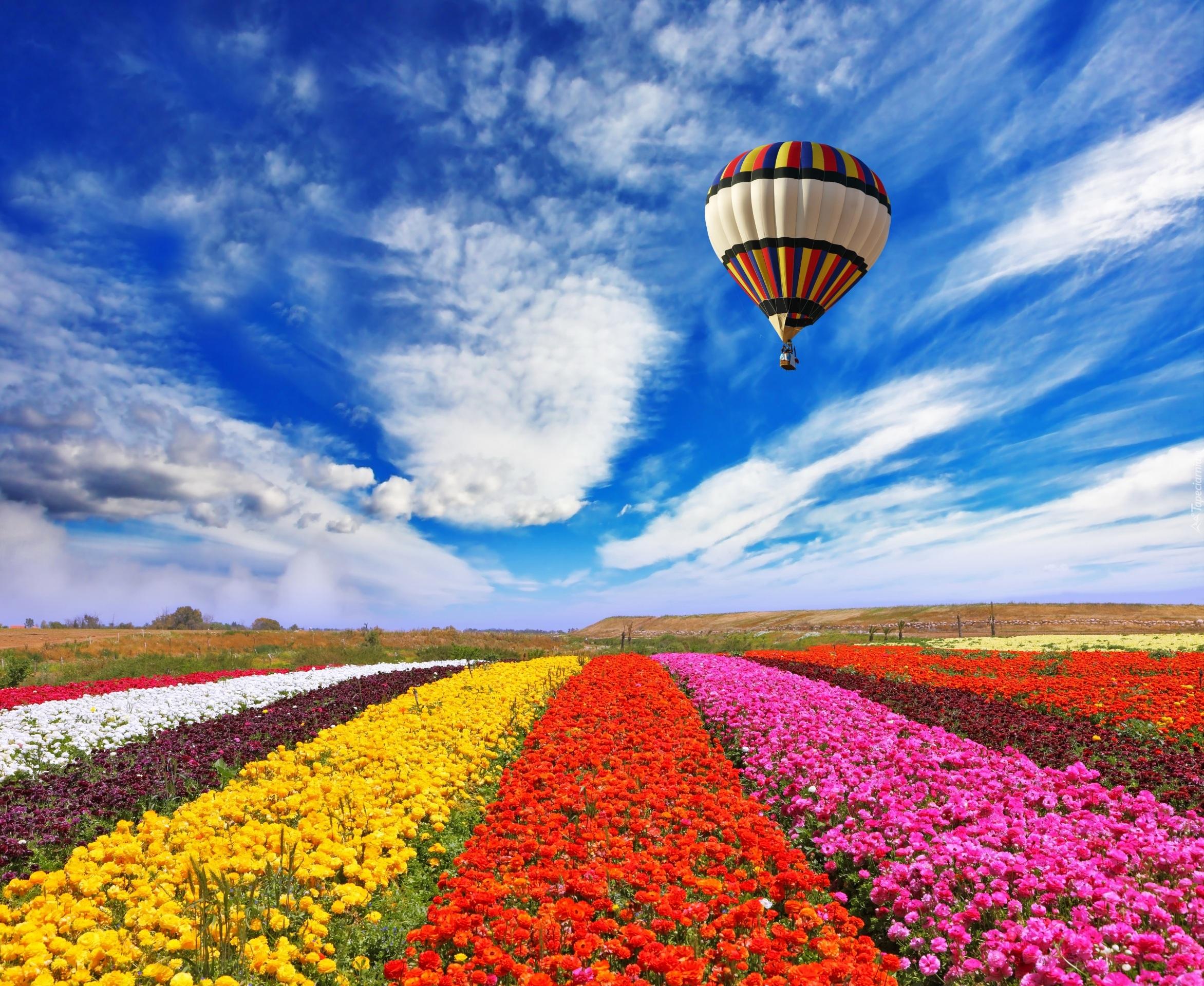 Tapety baloniarstwo for Immagini per desktop primavera