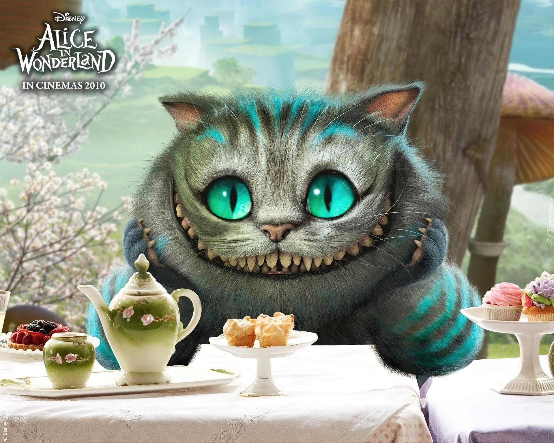 Alicja W Krainie Czarów Bajkowy Kot