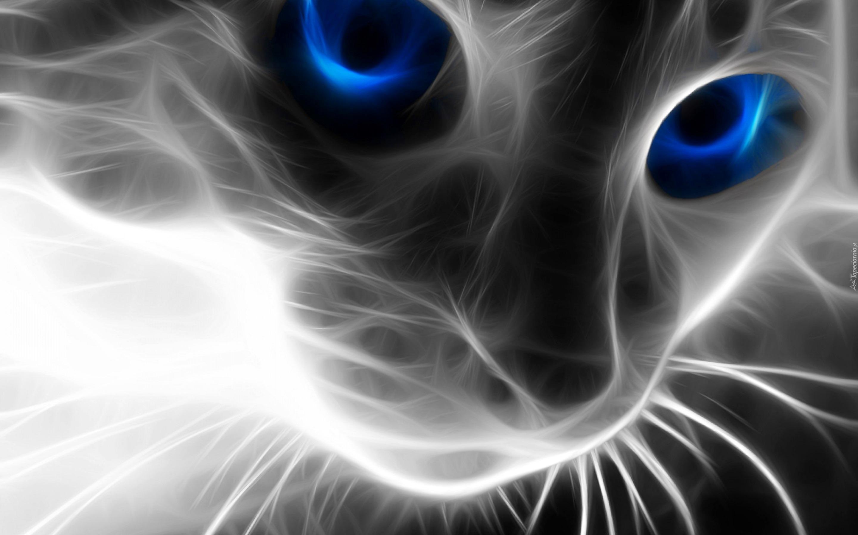 Kot Sierść Niebieskie Oczy 3d