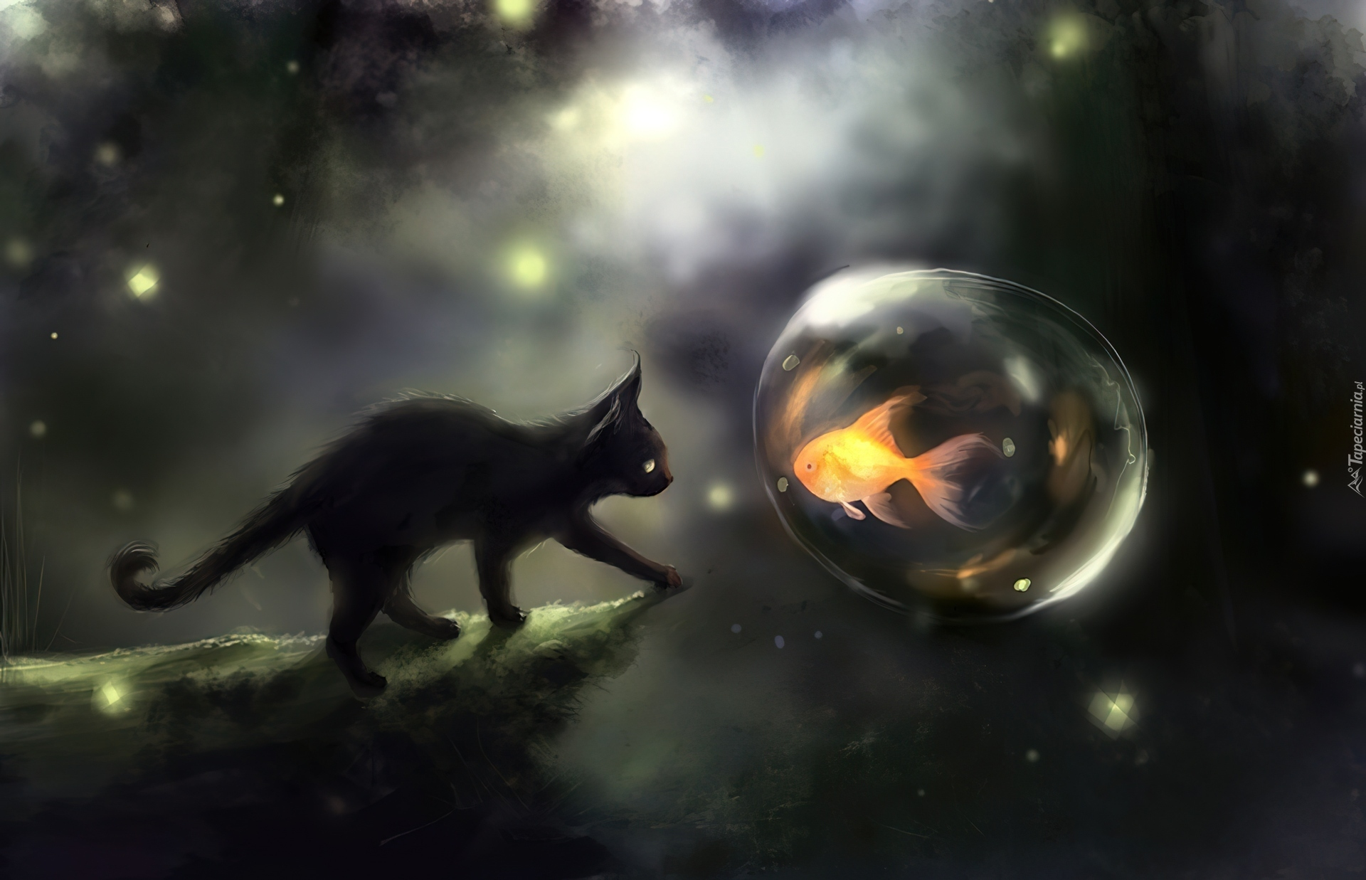 Kot Bańka Ryba Grafika 3d