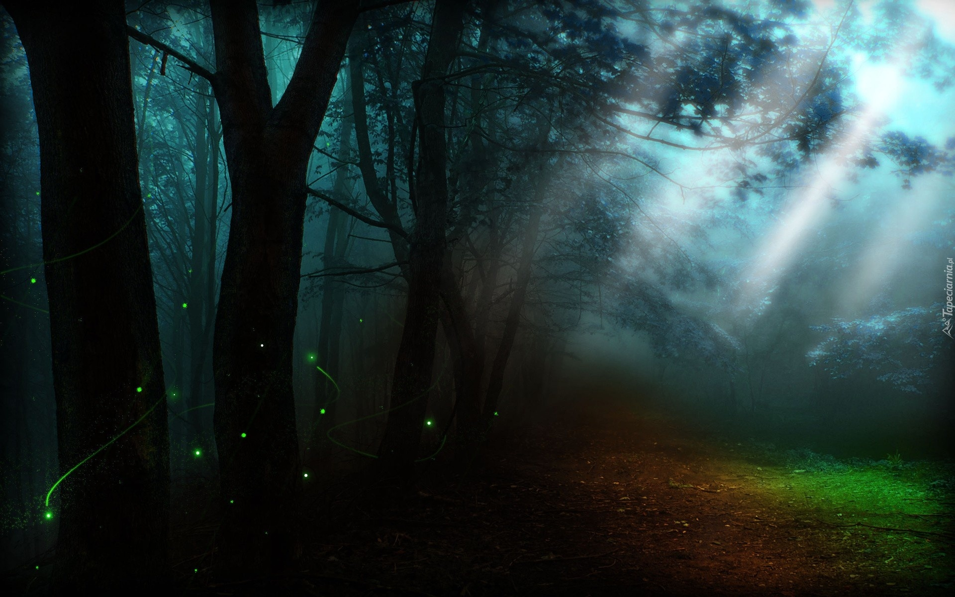Фон лес ночной