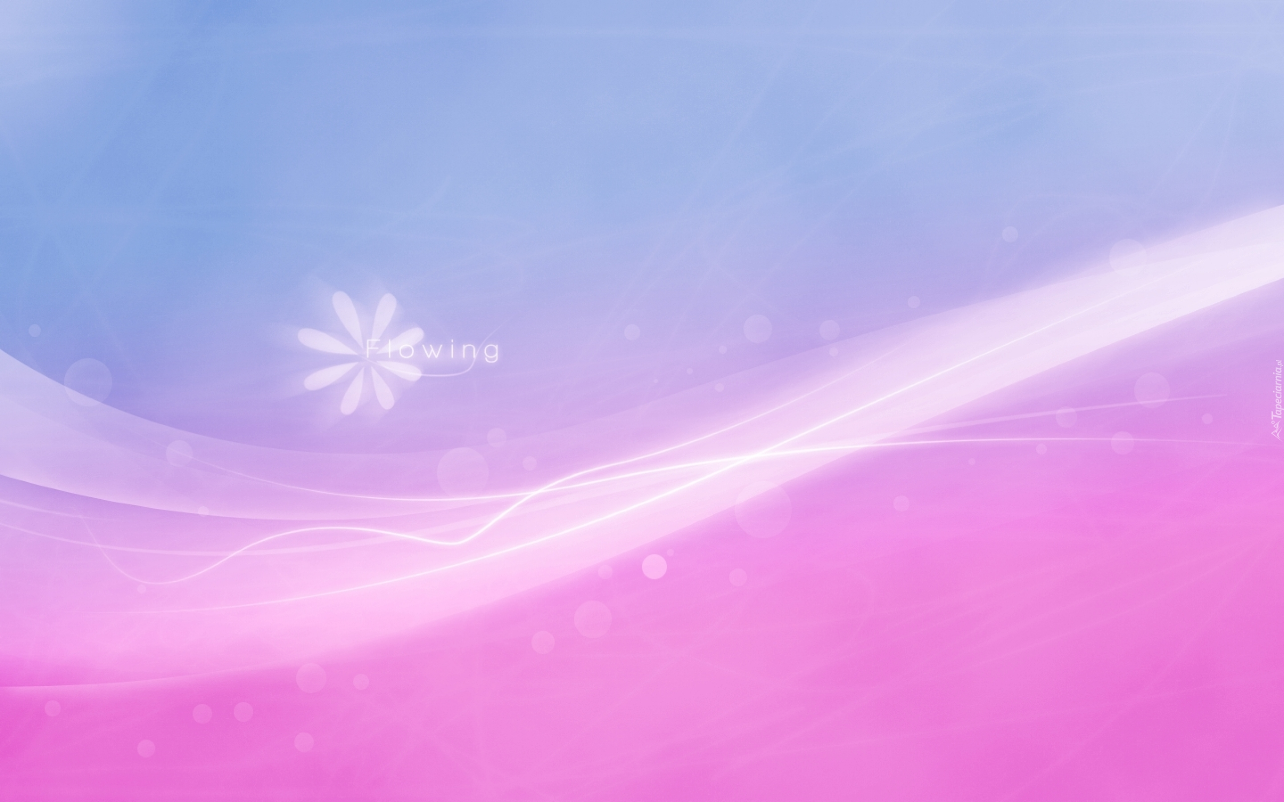 pink and blue background - HD1440×900