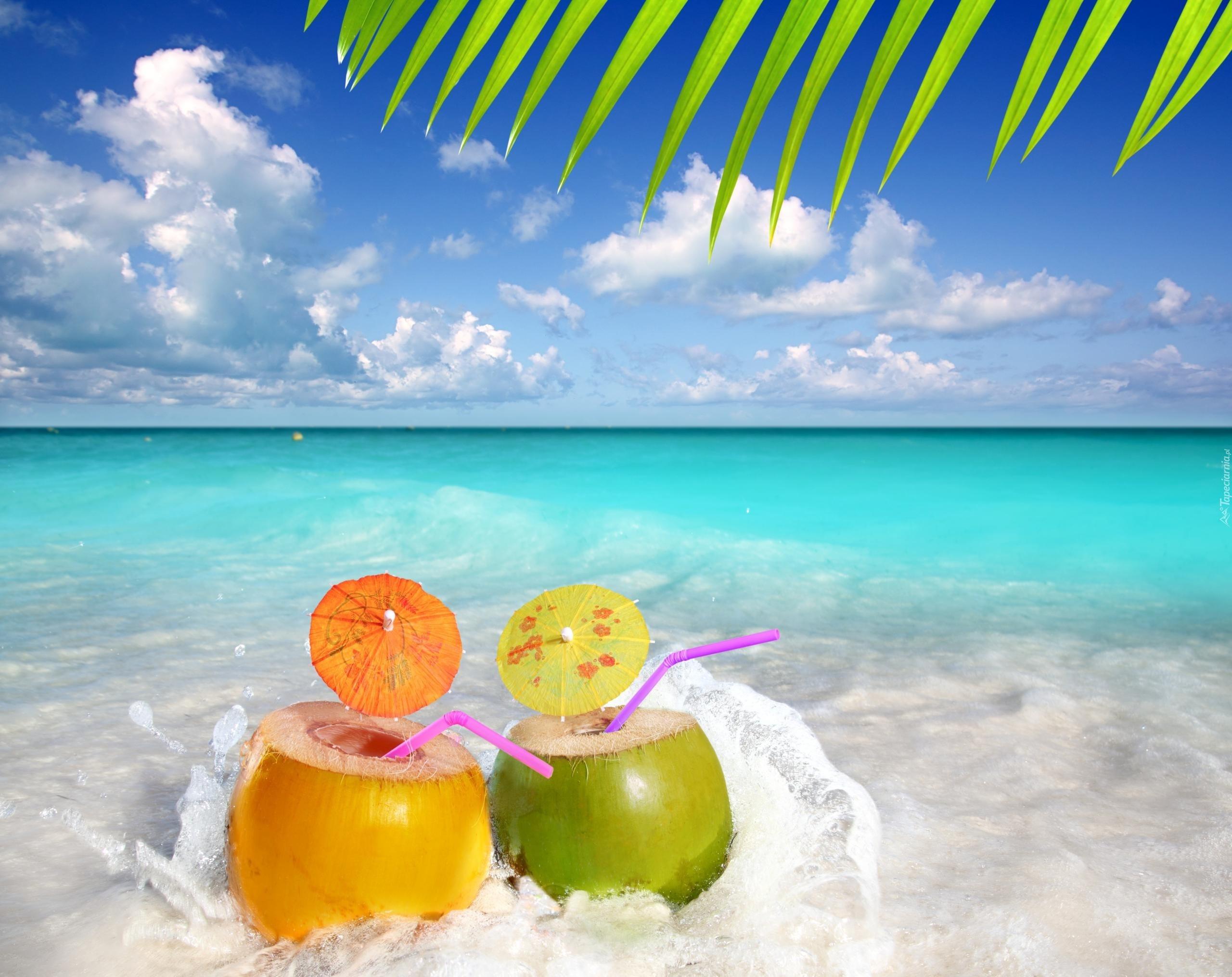 Sailboat Holiday Summer 4k Hd Desktop Wallpaper For 4k: Morze, Drinki, Liść