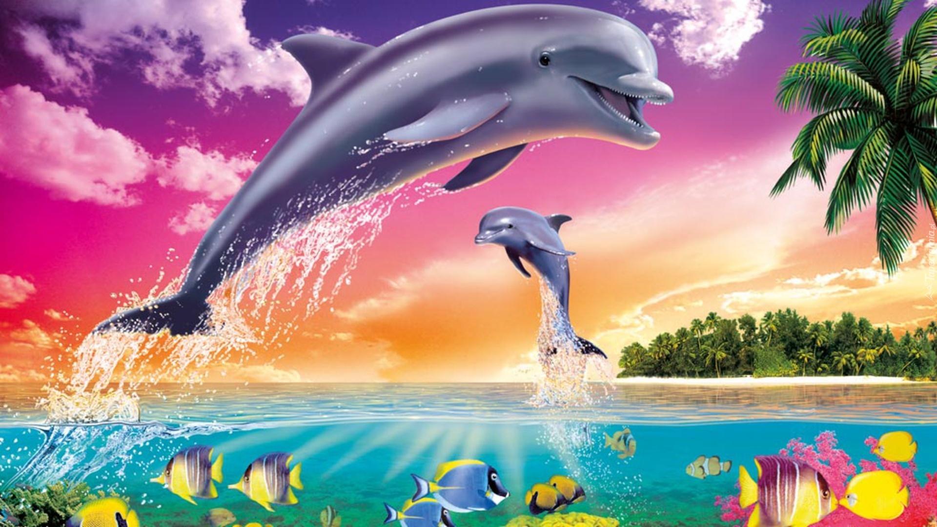 Картинки с дельфинами и лошадками