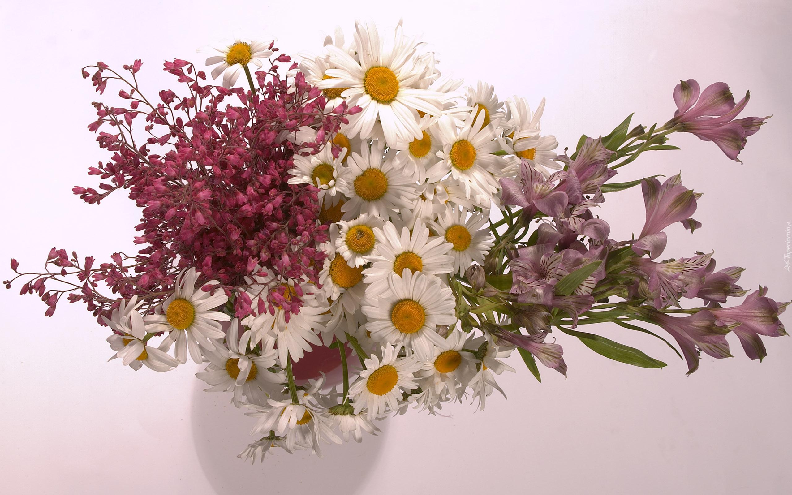 tapeta-bukiet-kwiatow-na-jasnym-tle.jpg