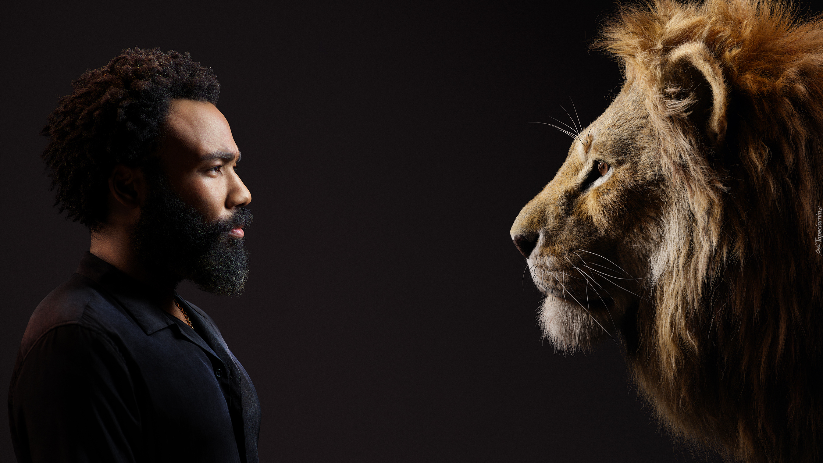 Film, Król Lew, The Lion King, Aktor, Donald Glover, Lew