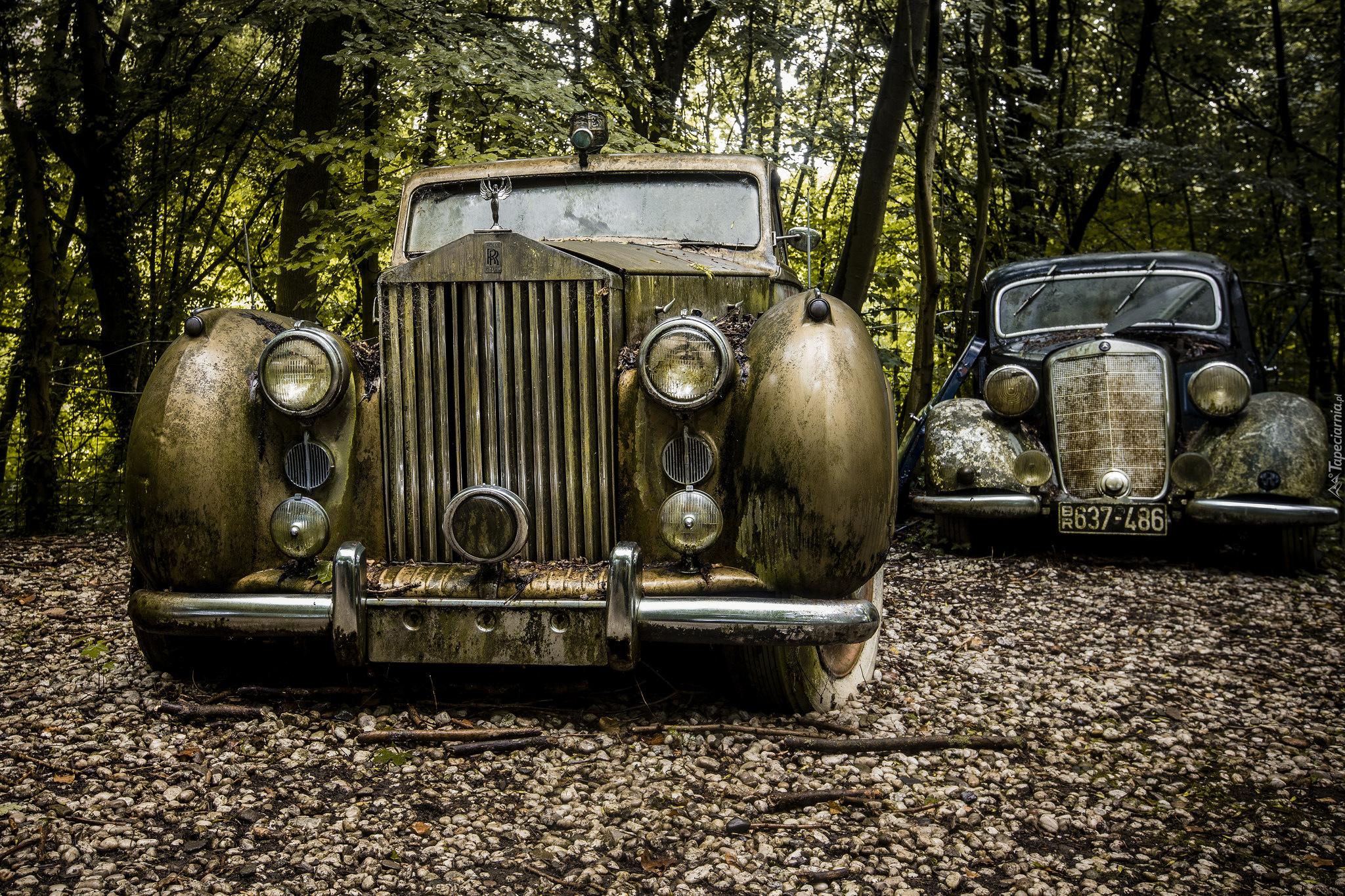 Dwa Stare Samochody Porzucone W Lesie