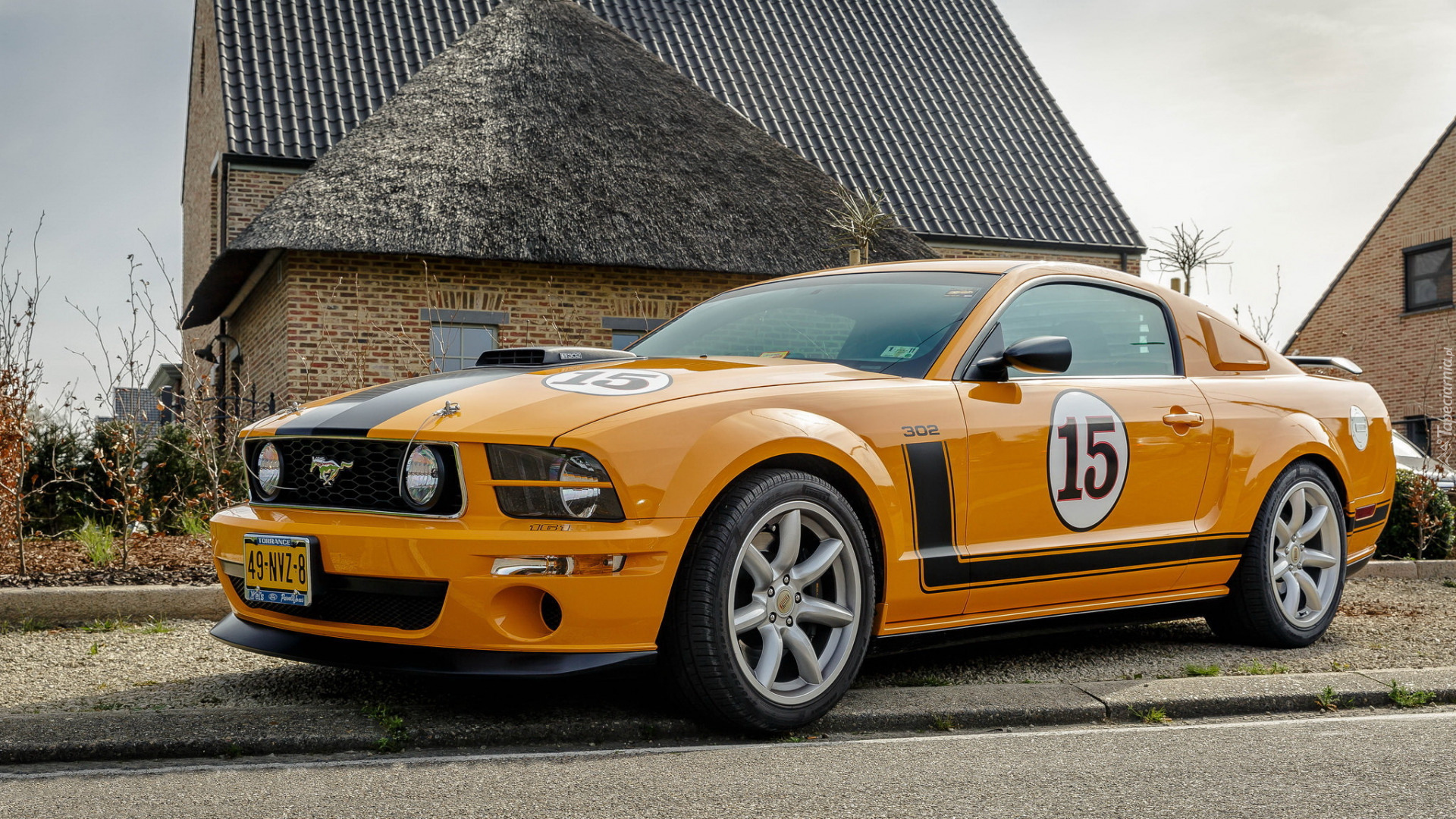 Ford Mustang 302, Saleen