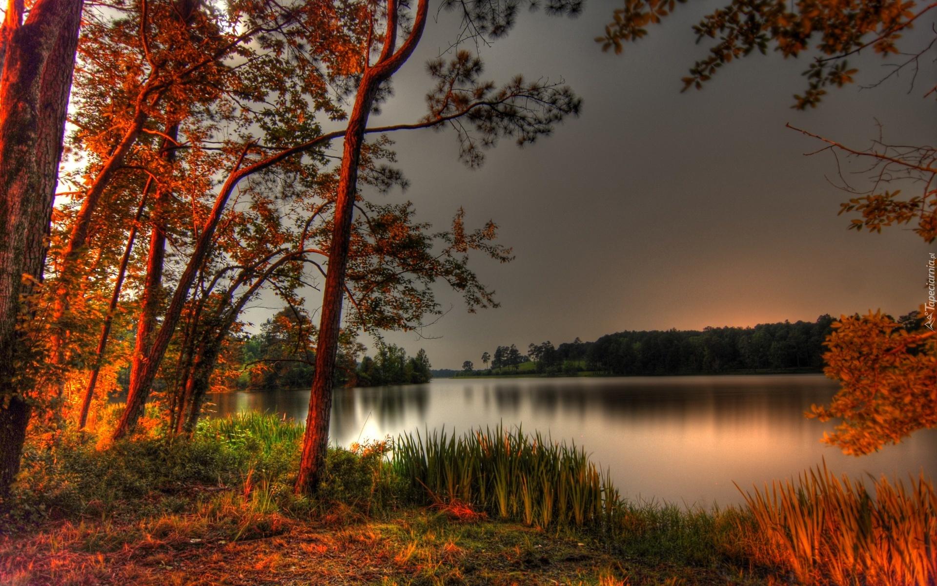 Золотая осень фото смотреть 4