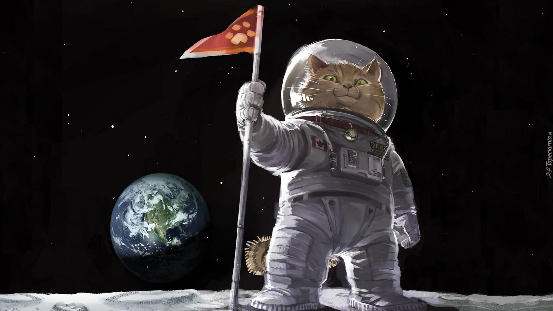 Kot Astronauta W Grafice 3d