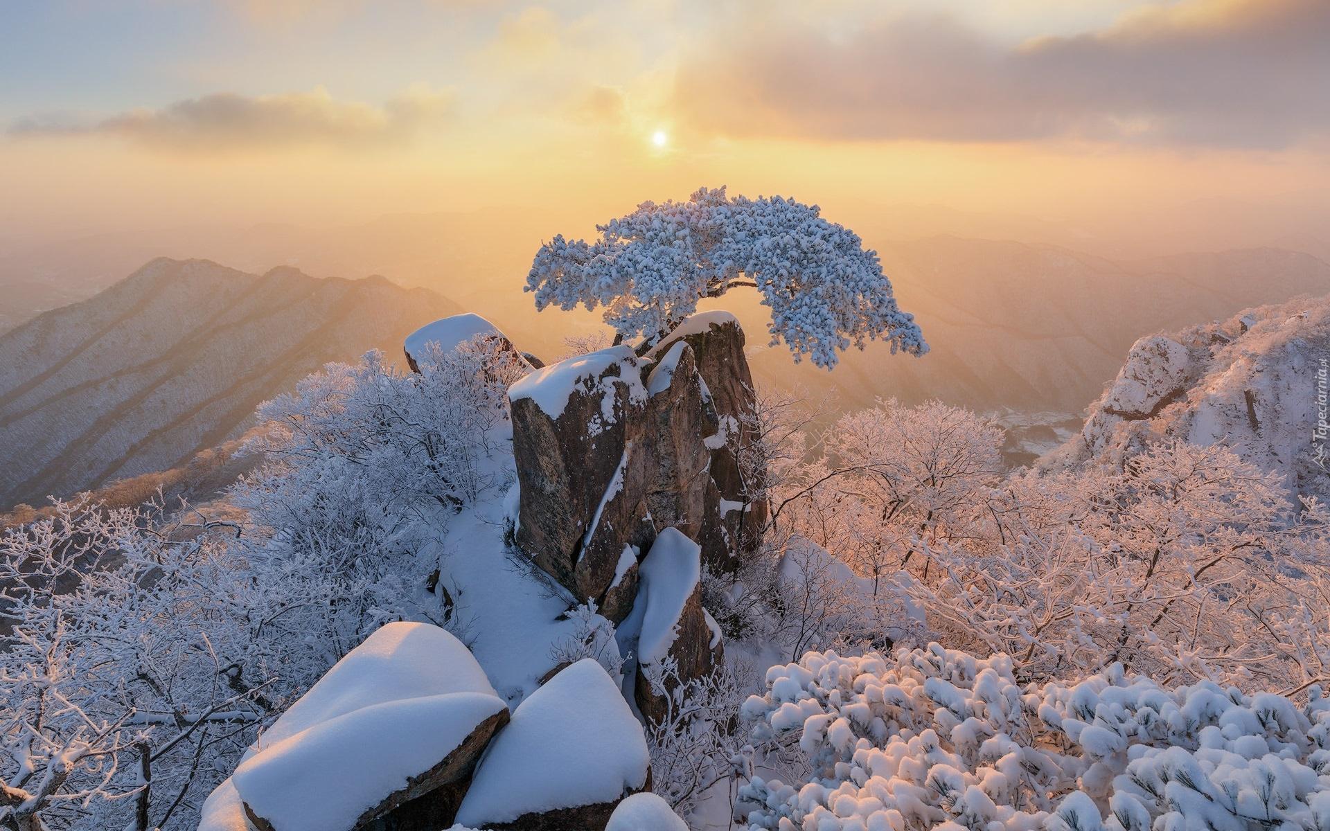 tapeta-osniezone-drzewa-wsrod-skal-w-koreanskim-parku-prowincjonalnym-daedunsan.jpg