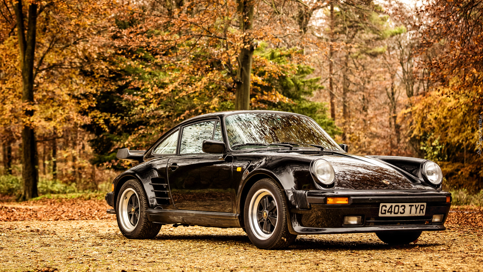 Czarne, Porsche 911 turbo, 930 Limited Edition