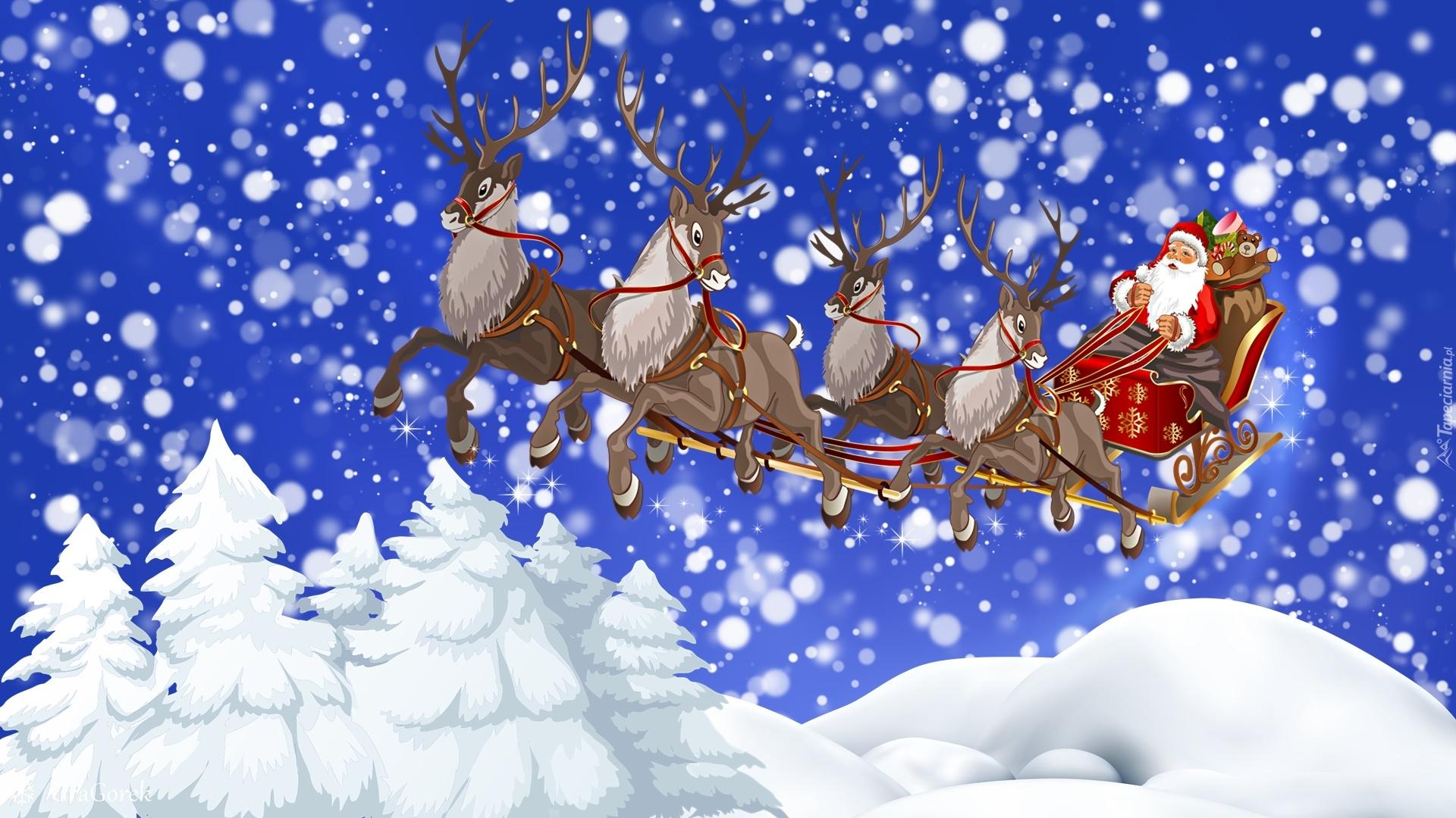 Święta, Mikołaj, Sanie, Renifery, Świerki, Śnieg, Grafika