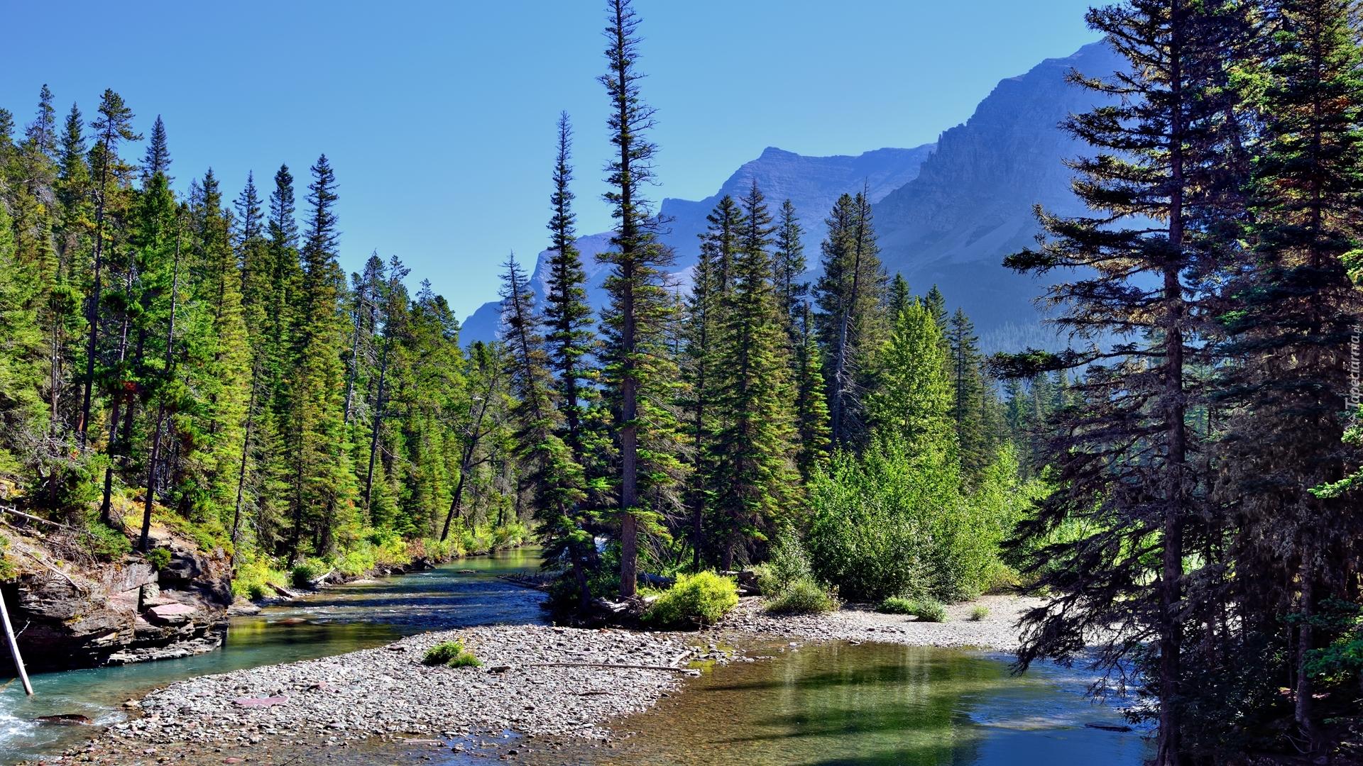 tapeta-rzeka-w-parku-narodowym-glacier.jpg